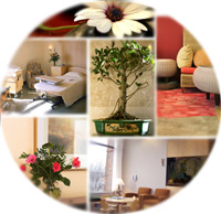 collage of interior healing environment photos
