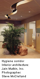 green space in hospital corridor