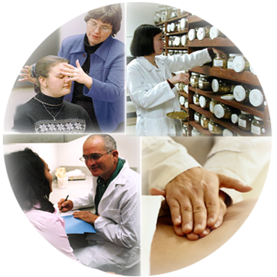 collage of holistic providers