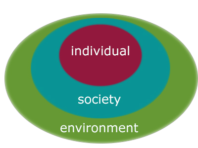 Graphic depicting the levels of individual, society, and environment.