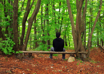 Man sitting alone on bench in peaceful forest.