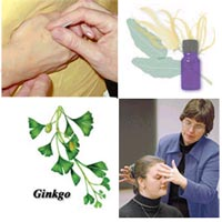 Collage of Complementary Therapies
