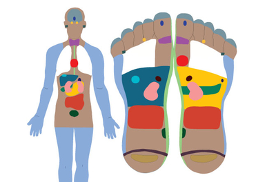 illustrated chart of foot reflexology points as they correspond to the human body