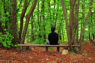 man sitting on a bench in a peaceful forest