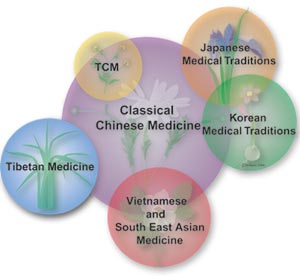 Systems of Oriental Medicine